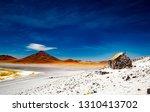 small stony house near wide... | Shutterstock . vector #1310413702