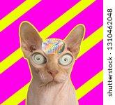 funny art collage. sphynx cat... | Shutterstock . vector #1310462048