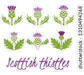 set of scottish thistles.... | Shutterstock .eps vector #1310494268