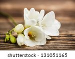 Stock photo white freesia blossom on wooden background 131051165