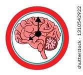 the circadian rhythms vector... | Shutterstock .eps vector #1310542922