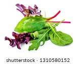 salad leaves mix with rucola ... | Shutterstock . vector #1310580152