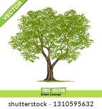 trees isolated on white... | Shutterstock .eps vector #1310595632