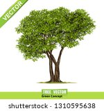 trees isolated on white... | Shutterstock .eps vector #1310595638