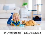 Stock photo child playing with cat at home kids and pets little boy feeding and petting cute ginger color cat 1310683385