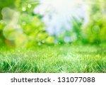 Soft Defocused Spring...
