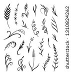 plants and leaves vector set on ...   Shutterstock .eps vector #1310824262