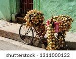 matanzas  republic of cuba   15.... | Shutterstock . vector #1311000122