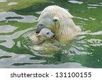Stock photo bathing polar bears 131100155