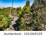 guadalajara  mexico   january 1 ...   Shutterstock . vector #1311065135