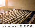 cakes on automatic conveyor... | Shutterstock . vector #1311129932
