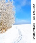 footprints on snow path along... | Shutterstock . vector #1311260855