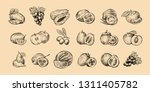 set of fruits. fresh food ... | Shutterstock .eps vector #1311405782