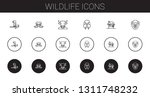 wildlife icons set. collection... | Shutterstock .eps vector #1311748232