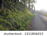 image of the road and journey... | Shutterstock . vector #1311806015