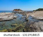 wonderful beauty wild beach... | Shutterstock . vector #1311918815