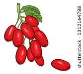 vector cartoon barberry on... | Shutterstock .eps vector #1312164788