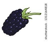 vector single cartoon blackberry | Shutterstock .eps vector #1312164818