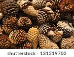 Pine Cones Nice And Dry And...
