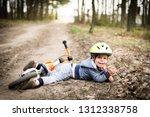 cute little boy fallen off his... | Shutterstock . vector #1312338758