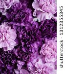 Small photo of Beautiful blossoming drake and pastel purple carnations flowers, close up texture