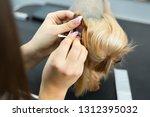 dog grooming   yorkshire... | Shutterstock . vector #1312395032