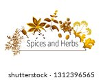 vector spices and herbs | Shutterstock .eps vector #1312396565