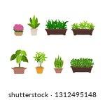 indoor and outdoor landscape... | Shutterstock .eps vector #1312495148