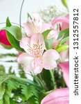 peruvian lily  lily of the... | Shutterstock . vector #1312557812