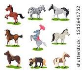 flat vector set of different... | Shutterstock .eps vector #1312641752
