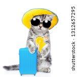 Kitten In Summer Hat Holds...