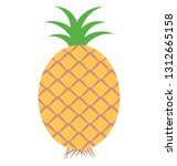 ananas  fruit isolated color...   Shutterstock .eps vector #1312665158