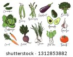 vegetables set of avocado ... | Shutterstock .eps vector #1312853882