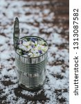 metal can with a spring flowers | Shutterstock . vector #1313087582