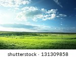 field of spring grass and forest | Shutterstock . vector #131309858