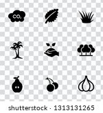 vector nature sign symbols. eco ... | Shutterstock .eps vector #1313131265
