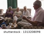 side view of senior people... | Shutterstock . vector #1313208098
