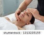 young beautiful woman enjoying... | Shutterstock . vector #1313235155