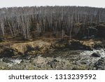 autumn mountain river stream...   Shutterstock . vector #1313239592