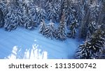 top view of the winter forest.... | Shutterstock . vector #1313500742