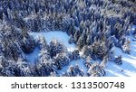 top view of the winter forest.... | Shutterstock . vector #1313500748