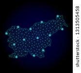 glossy polygonal mesh map of... | Shutterstock .eps vector #1313505458