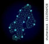 glossy polygonal mesh map of... | Shutterstock .eps vector #1313506928