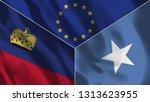 lichtenstein and somalia 3d...   Shutterstock . vector #1313623955
