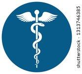 medical or healthcare symbol  ... | Shutterstock . vector #1313746385