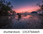 the background of the twilight... | Shutterstock . vector #1313766665