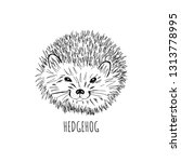 hand drawn vector hedgehog.t... | Shutterstock .eps vector #1313778995
