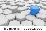 individuality. blue hexagon... | Shutterstock . vector #1313823008