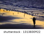 whitby  north yorkshire  uk   9 ... | Shutterstock . vector #1313830922