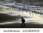 whitby  north yorkshire  uk   9 ... | Shutterstock . vector #1313830925